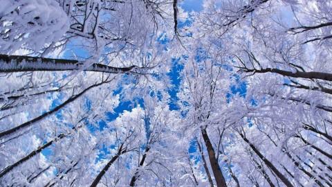 картинки на экран рабочего стола зима № 482127 бесплатно