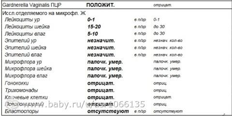 kolichestvo-leykotsitov-v-mazke-iz-vlagalisha