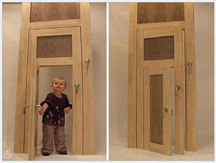 какие межкомнатные двери лучше ежели дома собака