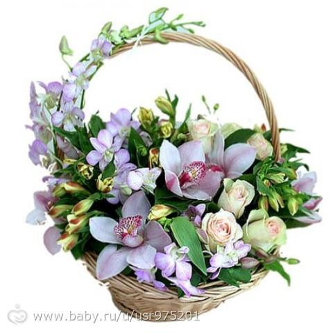 фотографии корзин из цветов