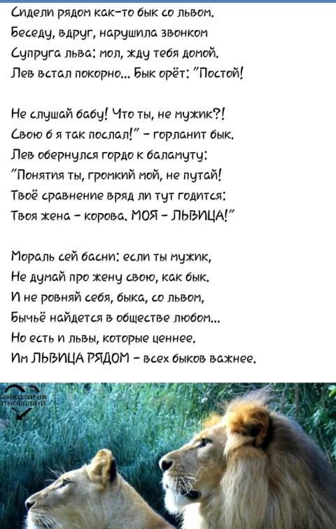 Стих про льва для мужчин на