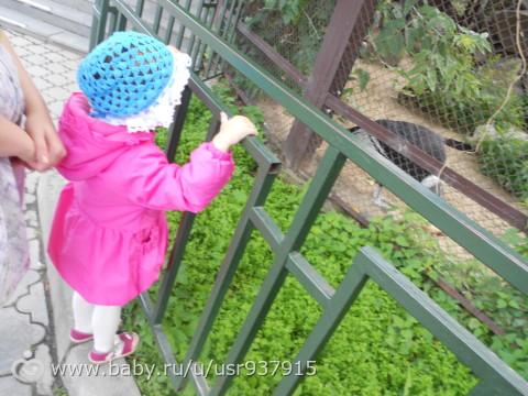 единение с природой. зоопарк