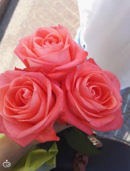 цветы для моего ангелочка